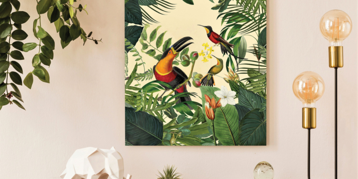 Toucan metal print by Andrea Haase at Wallsauce